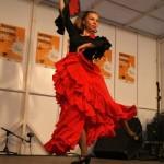 Catarina Flamenco