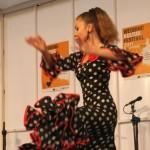 Flamenco Tanz Katharina Baimler