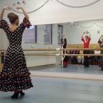 Flamenco Tanz beim Tag der Offenen Tür
