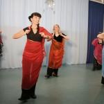 Orientalischer Schleiertanz - Abend der Tänze - Tanzshow in Birkenwerder